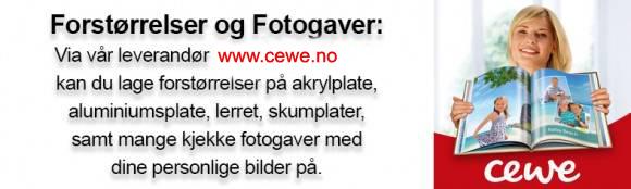 CEWE_Web